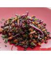 Petite salade de lentilles
